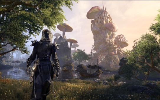 The ESO Morrowind: Perfect Combination of Visual and Narrative